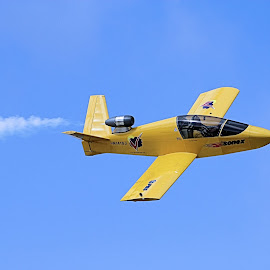 Flying Sky High  by Ann Prince - Transportation Airplanes ( flight, airplane, yellow )
