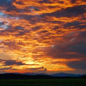 Sunrise in Transylvania by Ioan-Dan Petringel - Landscapes Sunsets & Sunrises ( silent, romania, sunrise, landscape, transylvania )