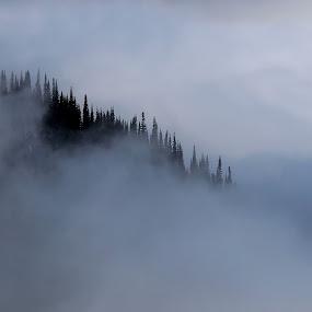 Shroud by John  Pemberton - Landscapes Mountains & Hills ( clouds, mountain, diagonal, veil, misty,  )