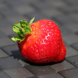 strawberry by Carola Mellentin - Food & Drink Fruits & Vegetables (  )