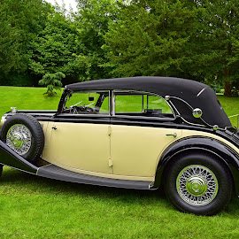 Horch Cabriolet by Marco Bertamé - Transportation Automobiles ( wheel, vintage, green, elegance, chrome, round, circle, yellow, horch, tire, cabriolet, beige, oldtimer, black )