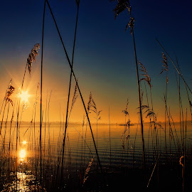 sunrise by Tomasz Marciniak - Landscapes Sunsets & Sunrises ( lake, sunrise )