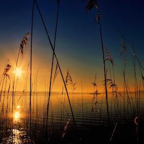 sunrise by Tomasz Marciniak - Landscapes Sunsets & Sunrises ( lake, sunrise,  )