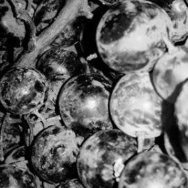 Black and White Grape by Ahmed Elsherbini - Food & Drink Fruits & Vegetables ( blackandwhite, fruit, black and white, vintage, grapes, grape, white, black )