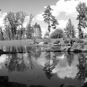 Black and White Landscape  by Nikki Prickett - Landscapes Prairies, Meadows & Fields ( water, clouds, blackandwhite, trees, summer, pwcbwlandscapes, landscape, pond )