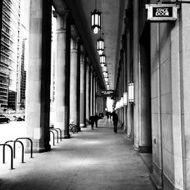 Lyric Opera  by David Plummer - Uncategorized All Uncategorized ( black and white, lyric opera, opera, cement, chicago )