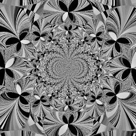 Black & White by Yvonne Collins - Digital Art Abstract ( edited, abstract, digital art, back & white, photography )