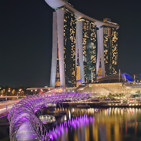 Marina Bay Sands by Sim Kim Seong - Buildings & Architecture Architectural Detail