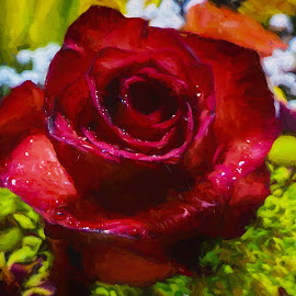 Digital Art Rose Painting by Dave Walters - Digital Art Things ( nature, rose, lumix fz2500, colors, digital art )