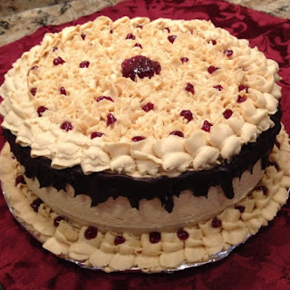 Chocolate PB and J Cake