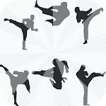 Taekwondo Training step APK Image