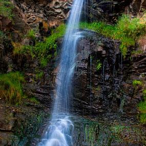 Hidden Falls by Annette Turner - Landscapes Waterscapes