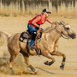 Barrel Racer by Joe Saladino - Sports & Fitness Rodeo/Bull Riding ( rider, girl, barrel race, horse, competition )