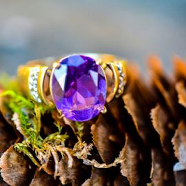 by Jeanne Knoch - Artistic Objects Jewelry