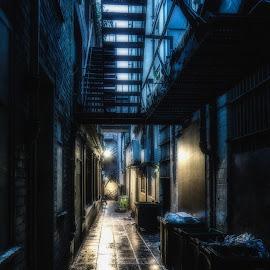 Blue Alley by Adam Lang - City,  Street & Park  Street Scenes ( fire escape, street, reflections, night, darkness, light, rain, alley )