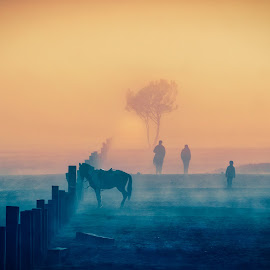 Dream Land by Tien Sang Kok - Landscapes Travel ( nature, negative space, silhouette, horse, artistic, landscape )