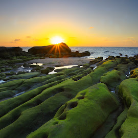 6.30pm by Lawrence Chung - Landscapes Sunsets & Sunrises ( sunset, sunsets, moss, sea, rock )