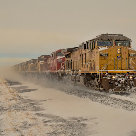 Kicking up Snow by Jeff Cottingham - Transportation Trains ( railroads, locomotive, union pacific, trains, triple track main, up )