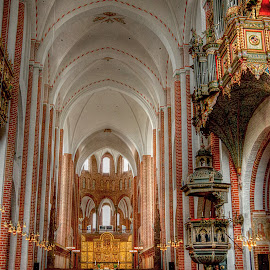 Roskilde~ by Karen McKenzie McAdoo - Buildings & Architecture Places of Worship