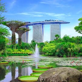 by Thợ Bờ Hồ - City,  Street & Park  City Parks