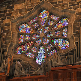 Stained Glass by Julie Sawicki - Buildings & Architecture Places of Worship ( bricks, organ pipes, monestary, stained glass )