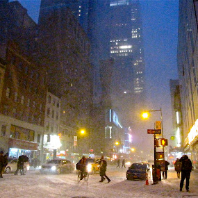 New York in the Snow  by Emily Jones - News & Events Weather & Storms ( cab, winter, snow, buildings, new york, city )