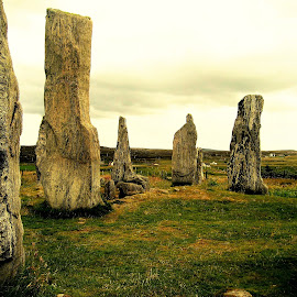 Stones in Scotland by Roxanne Dean - Landscapes Prairies, Meadows & Fields ( field, scotland, nature, stones, landscape, natural )