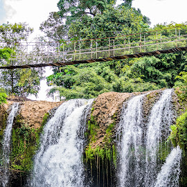 Waterfall Walk by Sarah Sullivan - Novices Only Landscapes