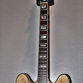 Electric Guitar #1 by Cal Brown - Artistic Objects Musical Instruments ( musical instrument, electric, guitar, artistic object, epiphone )