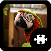 Game Parrot Jigsaw Puzzle apk for kindle fire