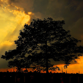 sky burn the land by Sabir Maruf - Landscapes Sunsets & Sunrises