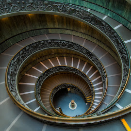 Bramante Staircase | Rome by Craig Bennett - Buildings & Architecture Architectural Detail ( stairs, bramante, rome, vatican, museum )