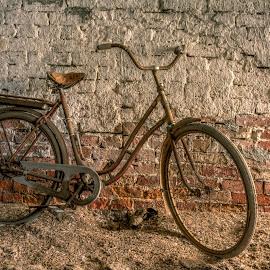 Bricks by Bojan Bilas - Transportation Bicycles (  )