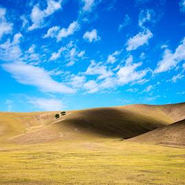 by Xianwen Xu - Landscapes Prairies, Meadows & Fields ( 2016, travel, grassland, leica, hulunbuir )