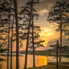 Sunset at the Lake by Jennifer  Loper  - Landscapes Sunsets & Sunrises ( mountains, yellow, clouds, boats, sun, water, trees, red, orange, ouachitas, marina, blue, sunset, pines, tall, lake,  )