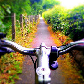 on the right track by Danny Charge - Instagram & Mobile Android ( cycle, bike, track, road, fun, colours )