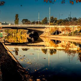 Bega river Timisoara by Nicolin Vladimir - City,  Street & Park  Street Scenes ( park, bega, timisoara, city, river )
