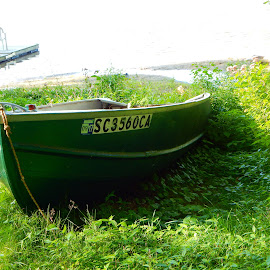 Green Boat by Kristine Nicholas - Novices Only Landscapes ( plant, water, chairs, grass, boats, plants, lake, boat, leaves, dock, chair, nature, pond, river )