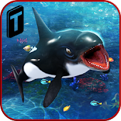 Download Killer Whale Beach Attack 3D APK for Laptop