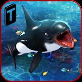 Killer Whale Beach Attack 3D APK for Bluestacks