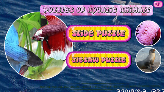 Puzzles of Aquatic Animals - screenshot