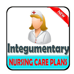 Nurse Care Plan Integumentary
