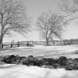 Winter in Gettysburg, PA by Tammy Pressley - Landscapes Weather ( history, winter, cold, pa, beautiful, snow, weather, landscape, gettysburg,  )