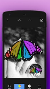 Color Splash - screenshot