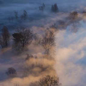 Morning mist on Adda by Pietro Ebner - Landscapes Prairies, Meadows & Fields ( fog, adda, morning, river, mist,  )
