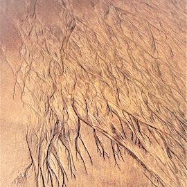 Beach Art by Filippos Petridis - Abstract Macro ( sand, beachart, myanmar, abstract art, art, beach )