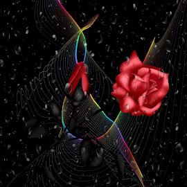 by FujiFilm - - Digital Art Things