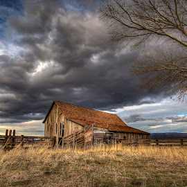 The Barn by Lee Molof - Buildings & Architecture Decaying & Abandoned