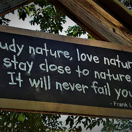 Love nature by Mary Gallo - Artistic Objects Signs ( nature, sign, love nature, study nature, wright,  )