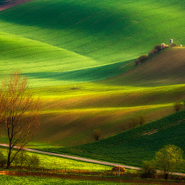 Moravian Waves by Pawel Uchorczak - Landscapes Prairies, Meadows & Fields ( moravia, pawel, sunset, uchorczak, light )